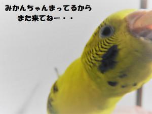 Dscn1346_2