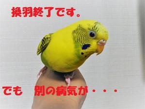 Dscn1368_2