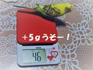 Dscn3643_2