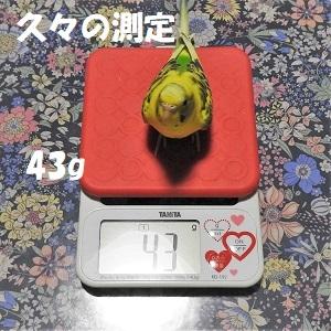 Dscn6946-2